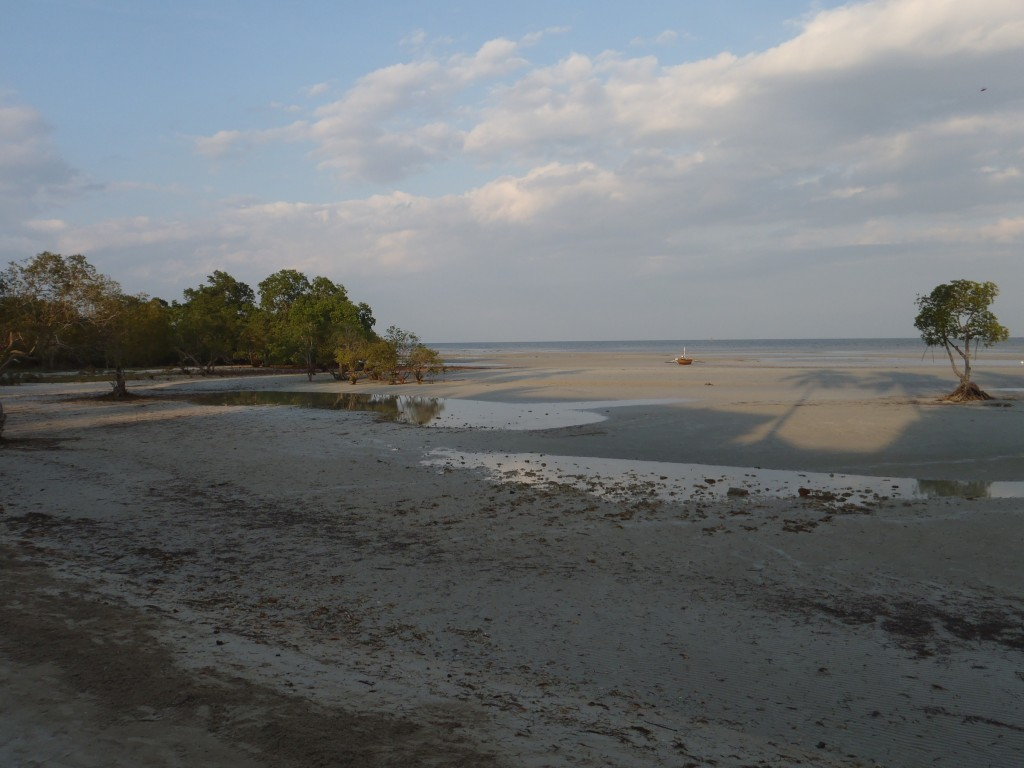 Come low tide, water disappears like there's no tomorrow. This is the same area; photo was taken at 5:20 PM.